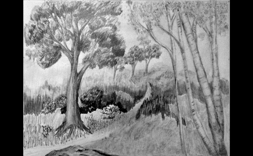 Drawing 1: Imaginary landscape based on tree exercises. Graphite.